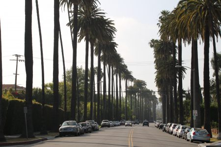 Beverly Hills iconic view...